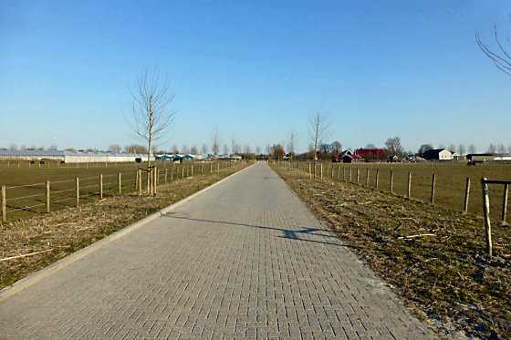 A straight walkway and flat, open farm pastures.