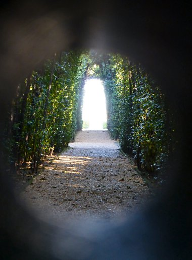 The tree-lined path on the other side of the door. The light at the end of the tunnel obscures the view of what lies beyond.