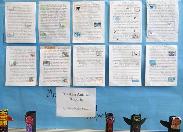 Alaska animal reports, third grade