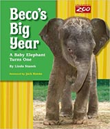 Beco's Big Year, by Linda Stanek