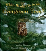 Where Would I Be in an Evergreen Tree?, illustrated by Andrea Gabriel