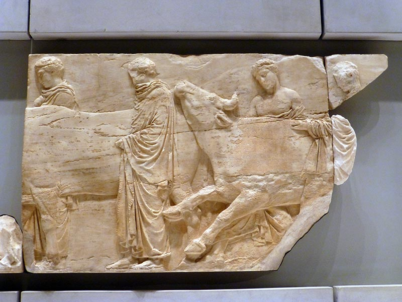 Parthenon Frieze: Leading a Sacrificial Bull - Jen Funk Weber