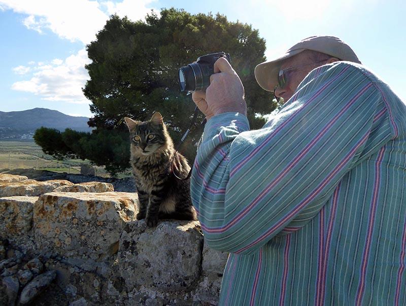 Phaestos feline guide 2, Crete, Greece - Jen Funk Weber