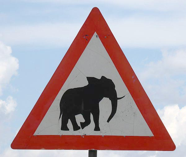 Elephant, animal sign in southern Africa