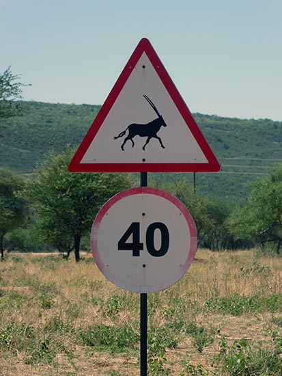 Gemsbok, oryx, animal sign in southern Africa